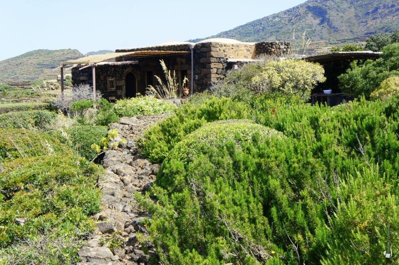 dammuso Artemisia